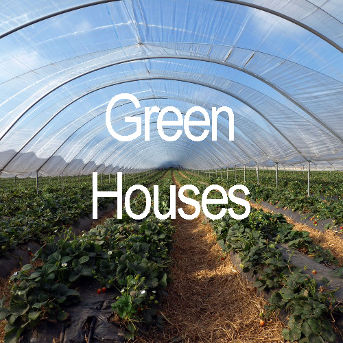 Green Houses a market that will benefit from Blue Box Technology's Solutions